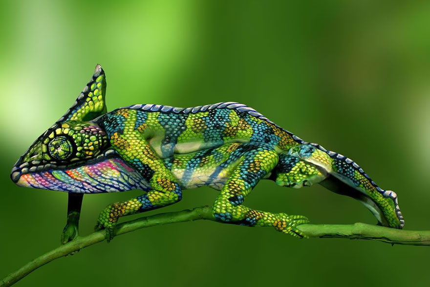 chameleon-body-painting-optical-illusion-johannes-stotter[1]