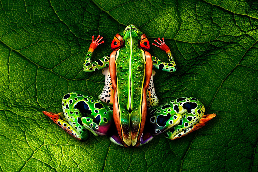 frog-body-painting-optical-illusion-johannes-stotter[1]